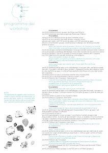 0-476_polimi_workshop_programma